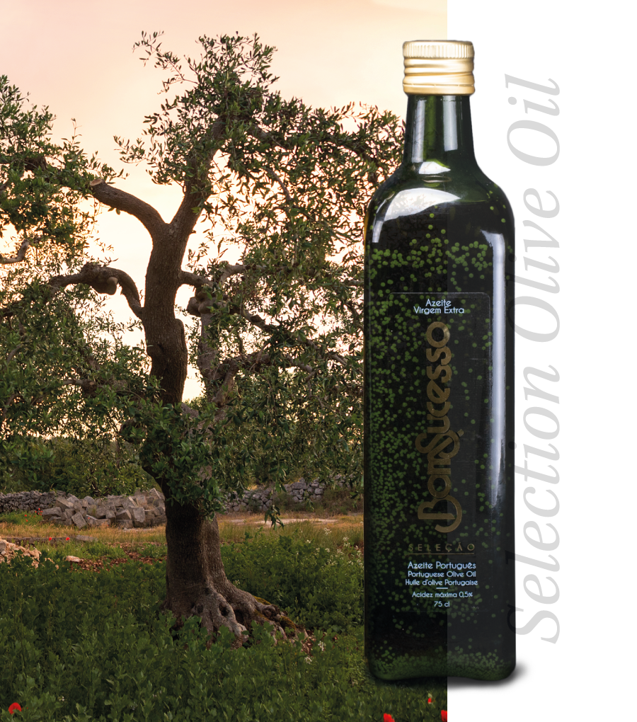 Selection Olive Oil